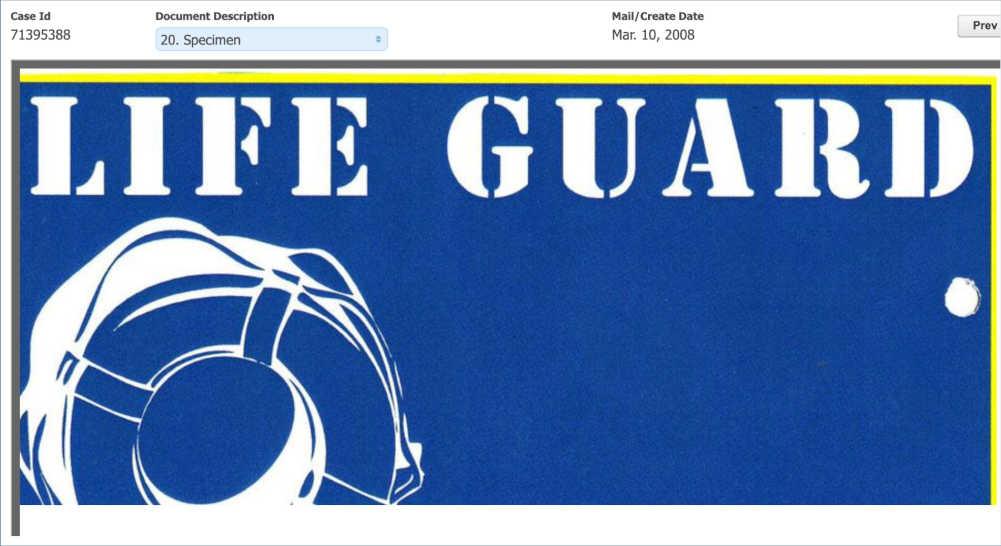 Lifeguard specimen: text plus flotation device graphic